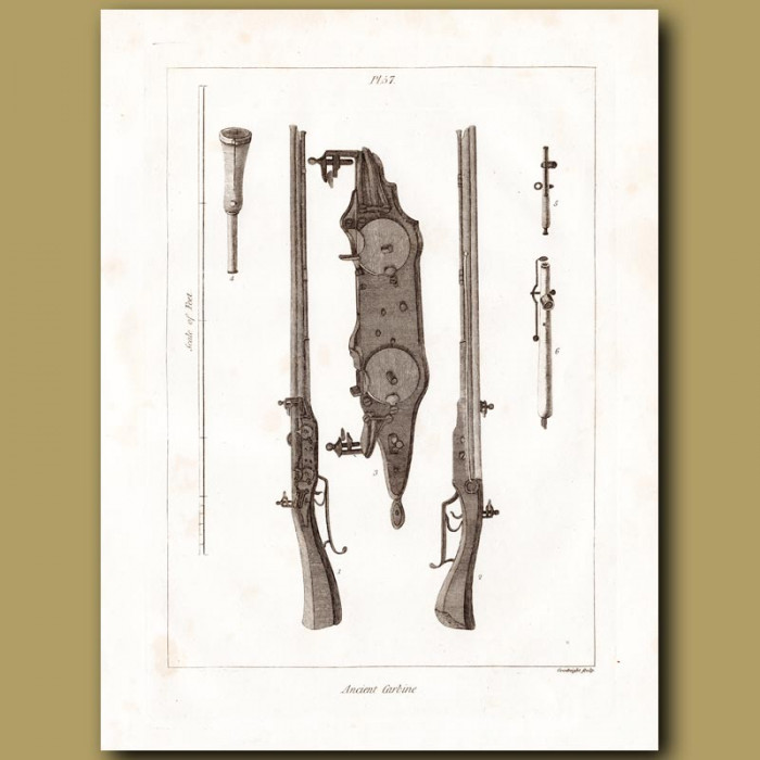 Antique print: Carabine Rifles