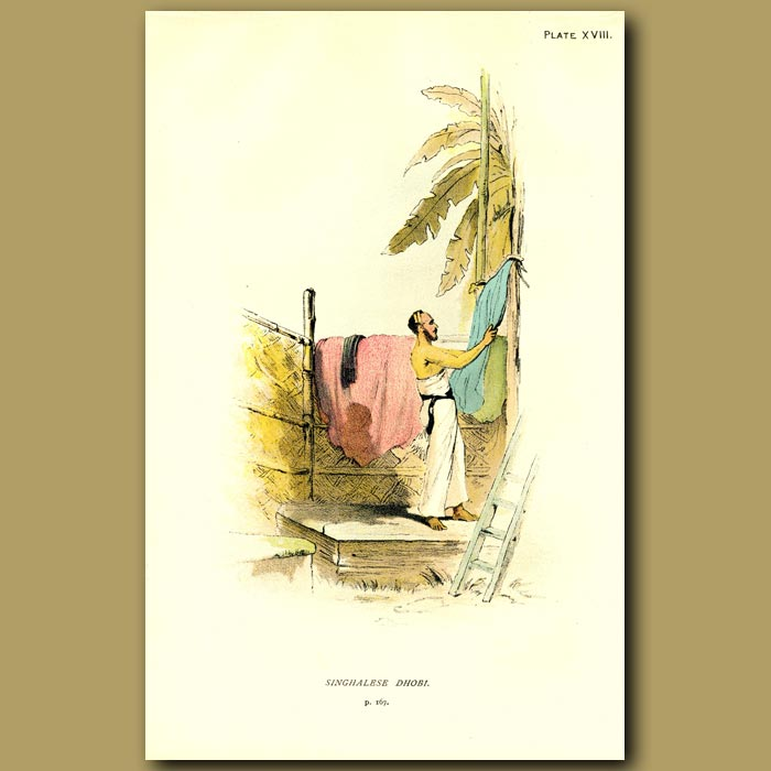 Antique print. Singhalese Dhobi In India