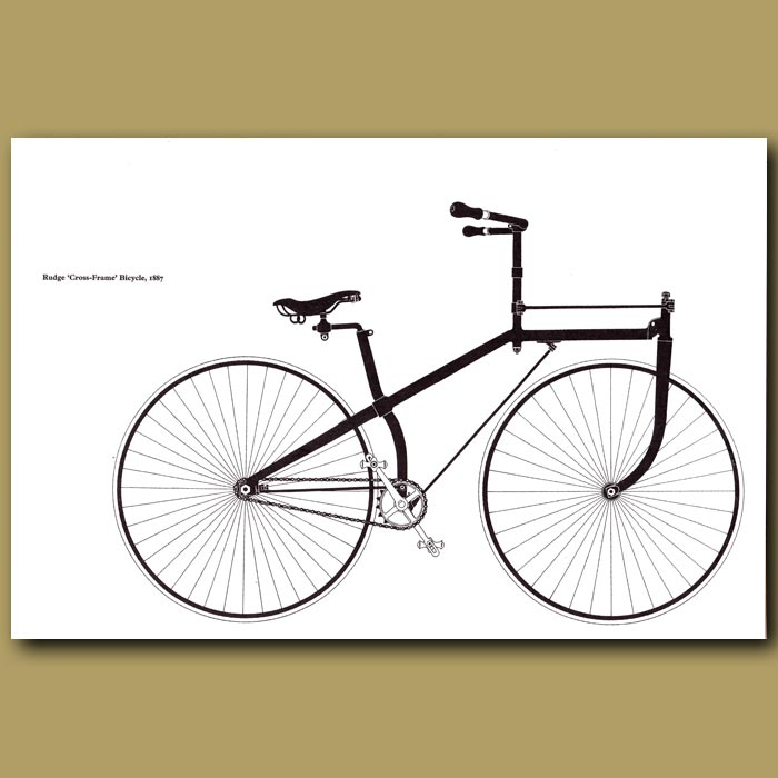 Antique print. Rudge 'Cross-Frame' Bicycle, 1887