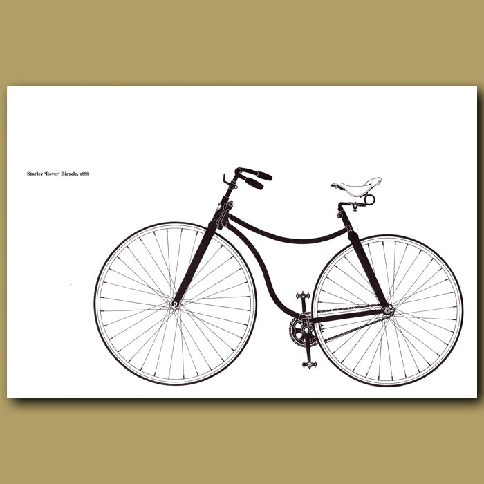 Antique print. Starley 'Rover' Bicycle, 1888