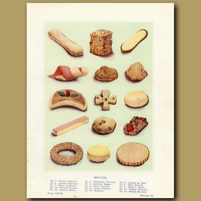 Antique print. Biscuits (Cookies)