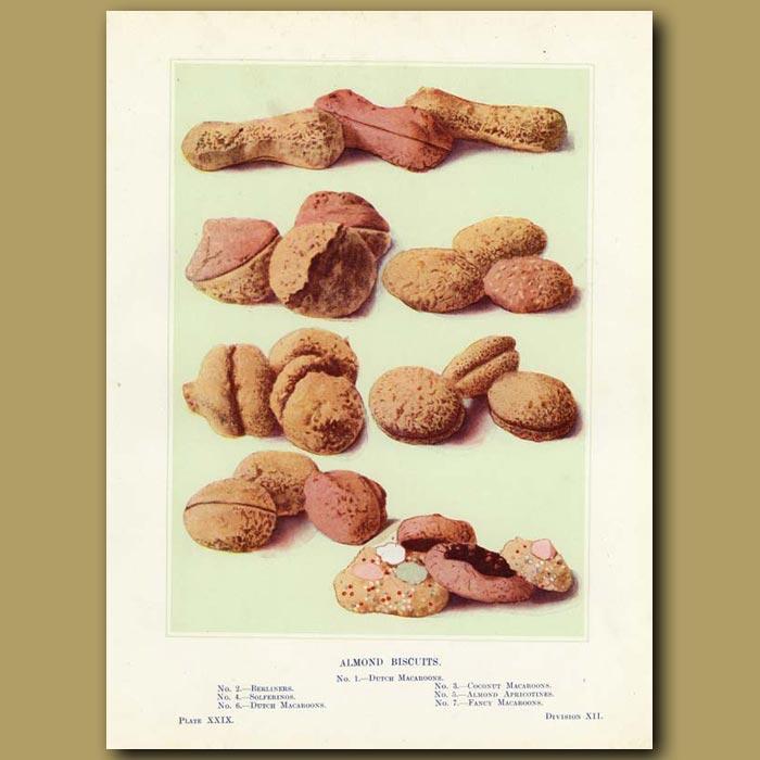 Antique print. Almond biscuits