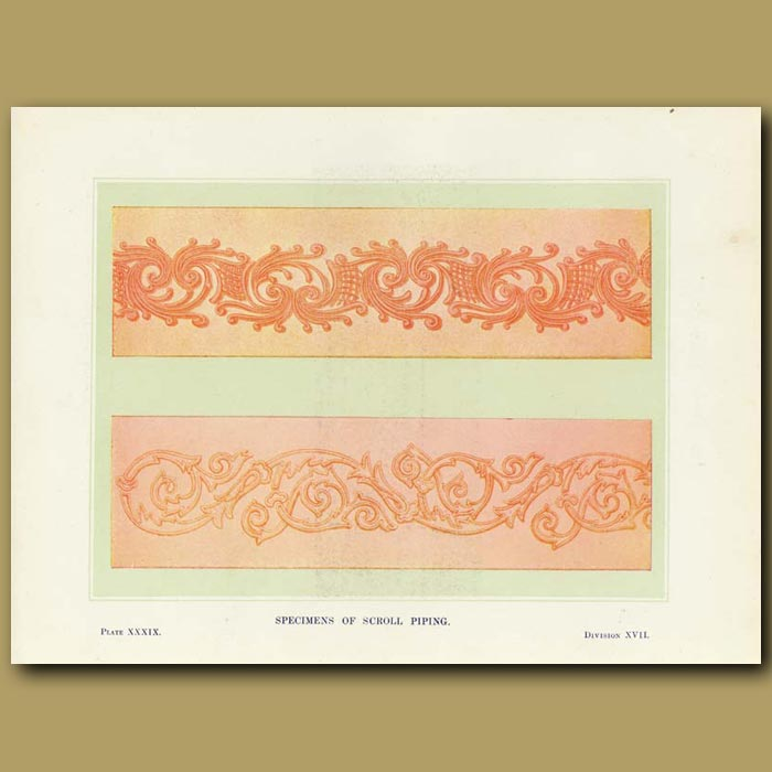 Antique print. Specimens of scroll piping