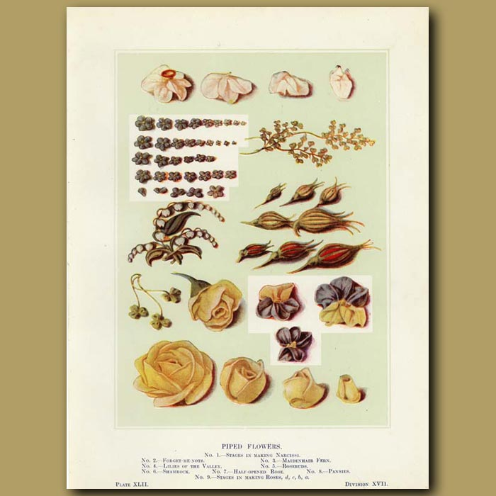 Antique print. Piped flowers (II)
