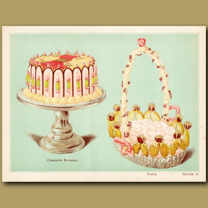 Charlotte Eccossais And Trifle: Genuine antique print for sale.