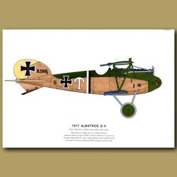 Albatros D -V Plane 1917