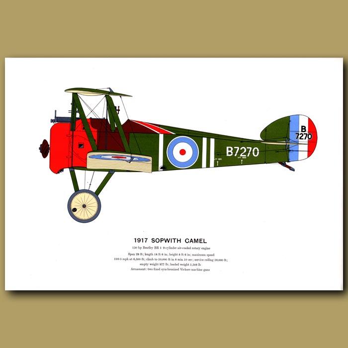 Antique print. Sopwith Camel Plane 1917