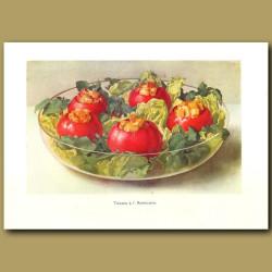 Tomates A Americaine