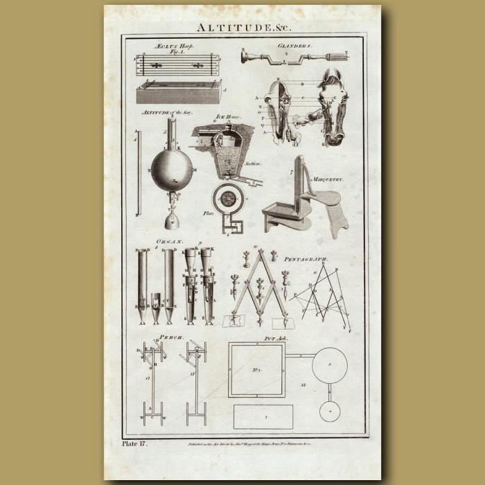 Altitudes: Genuine antique print for sale.