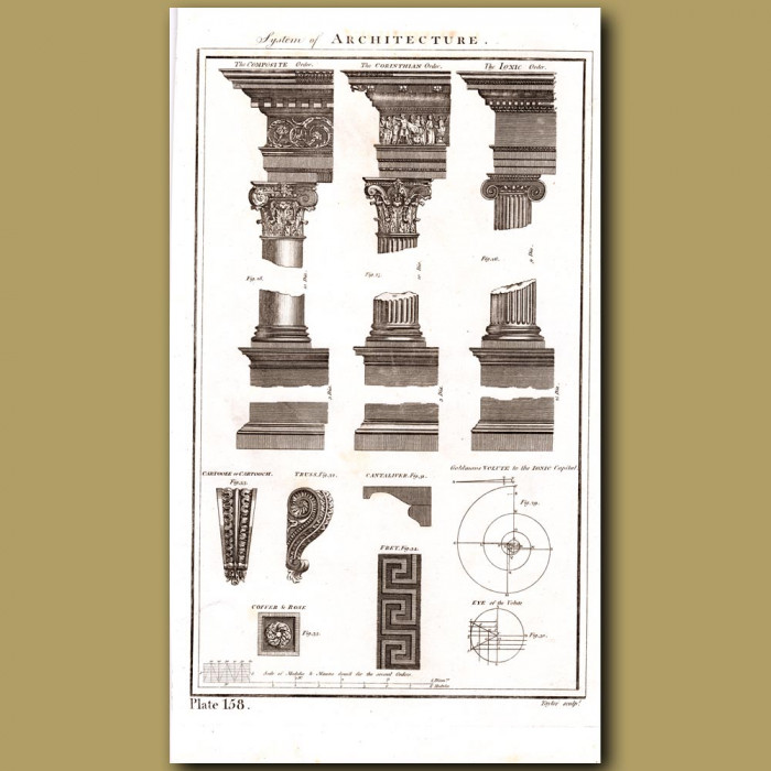 System of Architecture (Columns): Genuine antique print for sale.