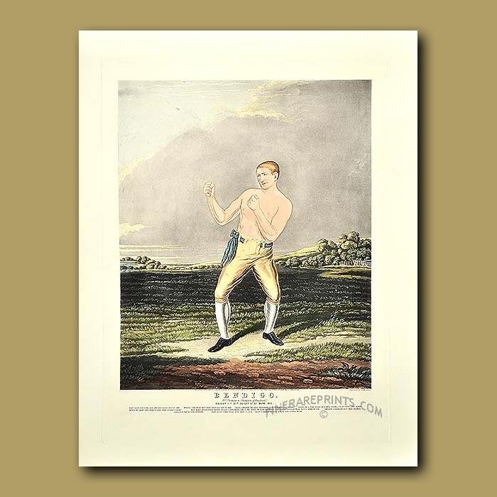 Antique print. Boxing Champion. Bendigo (Wm Thompson, Champion Of England)