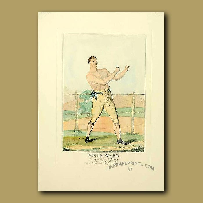 Antique print. Bare-Knuckle Boxing Champion. James Ward, Aged 26 Yrs