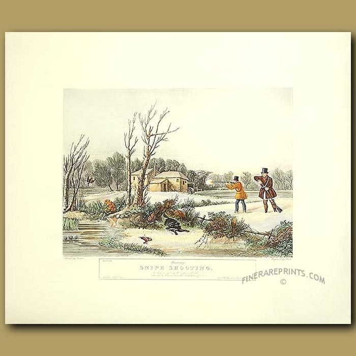 Antique print. Game Shooting By Turner. January Snipe Shooting