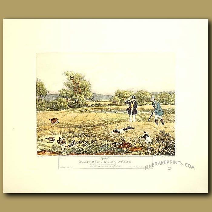 Antique print. Game Shooting By Turner. September Partridge Shooting