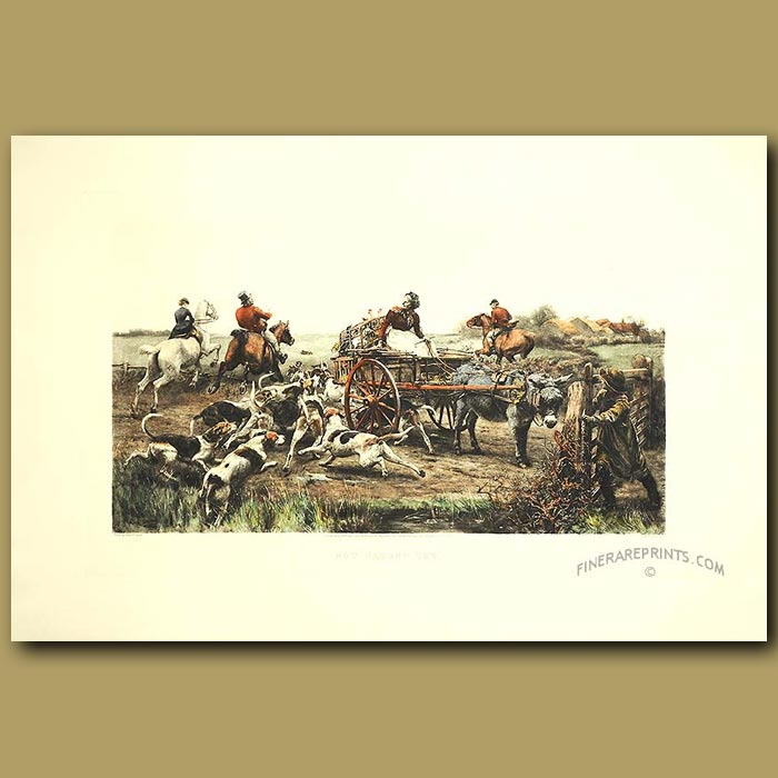 Antique print. A Fox Escaping From Fox-Hounds. Not Caught Yet