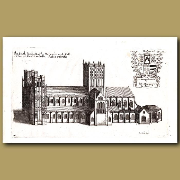 Antique print. Cathedral Church of Wells, south prospect