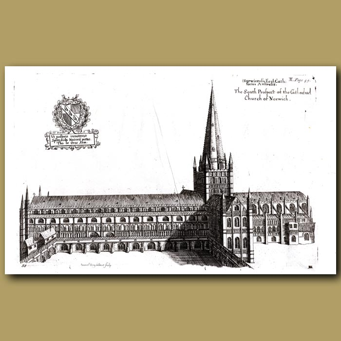 Antique print. Cathedral Church of Norwich, south prospect