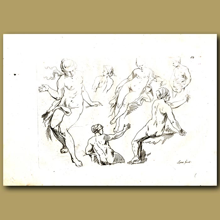 Antique print. Drawings Of Women