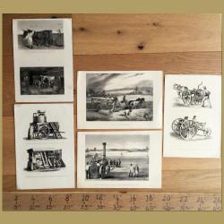 Set of 5. Farming Equipment