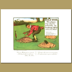 Rule XVIII The player may remove mole-hills by brushing lightly with the hand