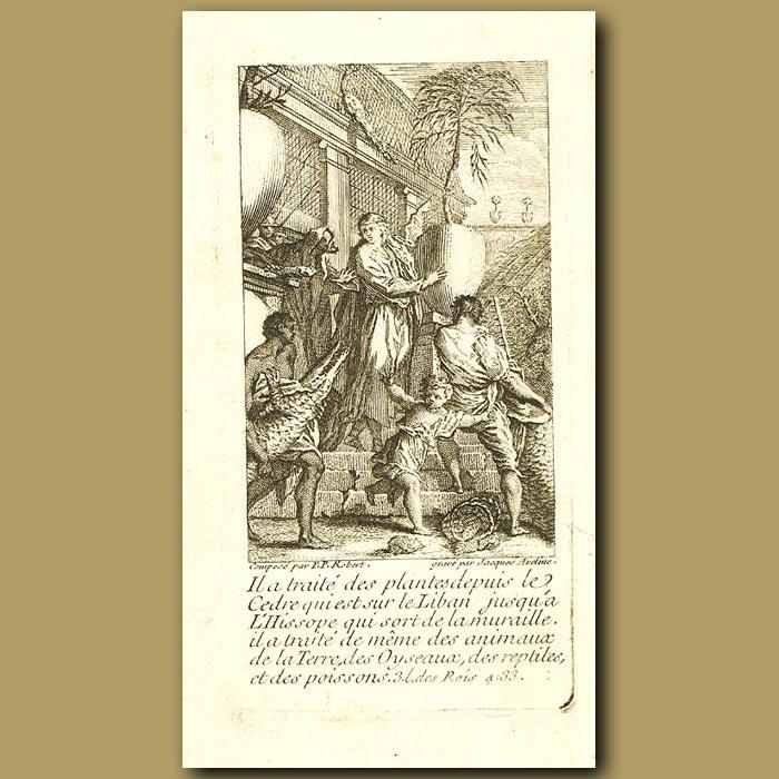 Antique print. Planting A Cedar Tree