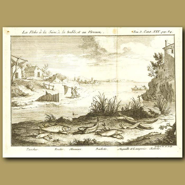 Antique print. Fishermen And Fish On A River Bank