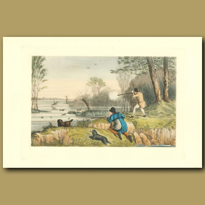 Antique print. Flapper-Shooting On The Great Lake In The Park: Duck Shooting