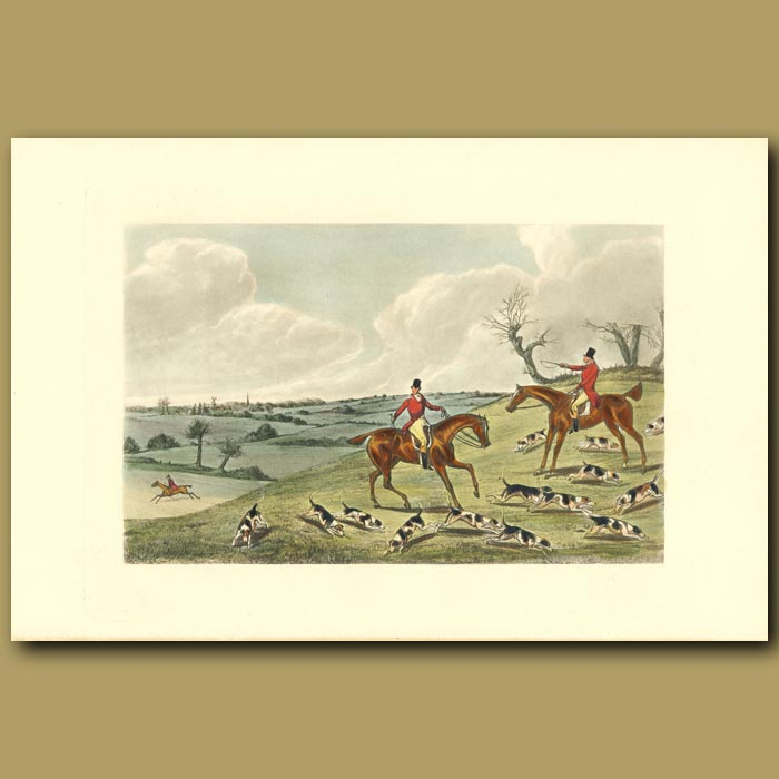 Antique print. For A Moment A Sheep-Foil Baffles The Scent: Fox Hunters