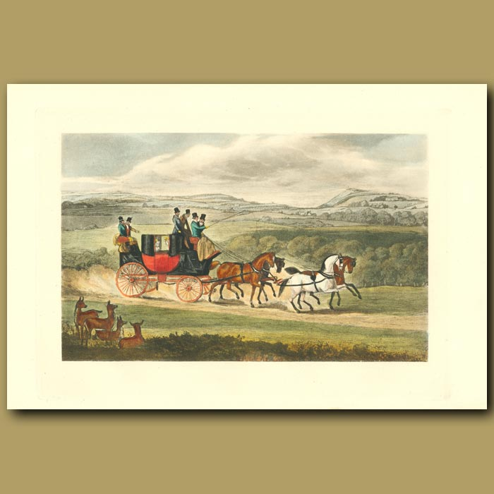 Antique print. The Four-In-Hand: A Coach On The Road