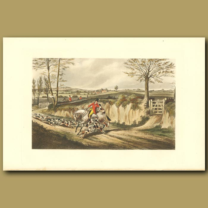 Antique print. Mr. Musters Hunted By His Hounds: Huntsman And His Dogs