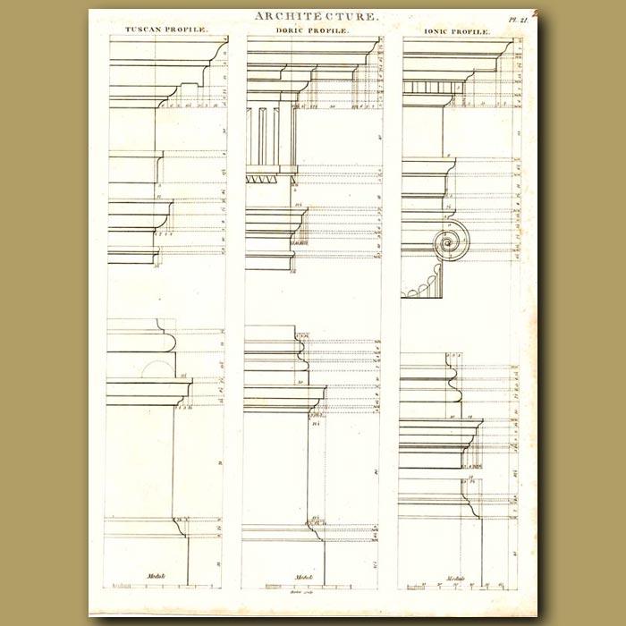 Antique print. Architecture: Tuscan, Doric and ionic column profiles etc.
