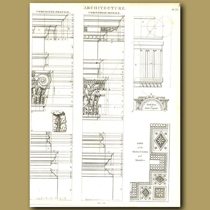 Antique print. Architecture: Composite and Corinthian column profiles etc.