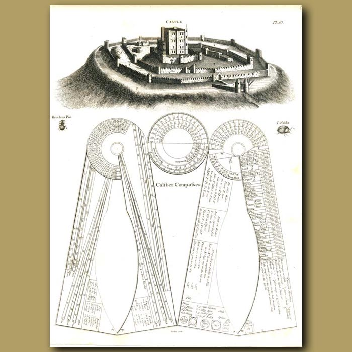 Antique print. Architecture: Castle etc.
