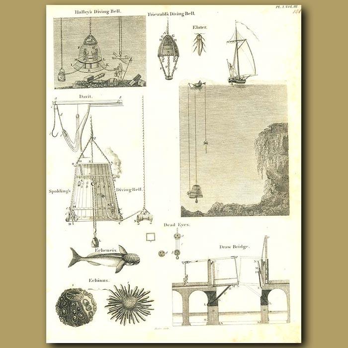 Antique print. Diving bells, draw bridge and sea urchins