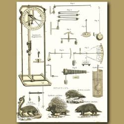 Sausure's Hygrometer