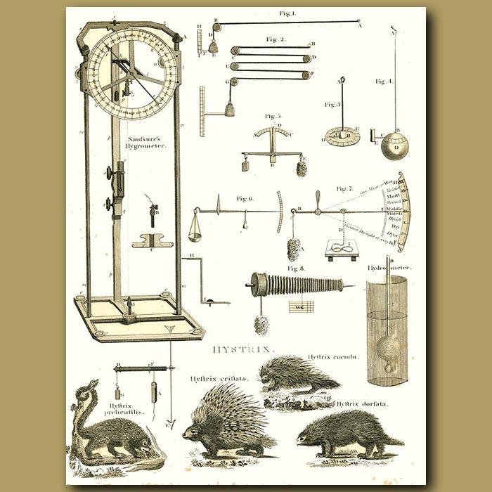 Antique print. Sausure's Hygrometer