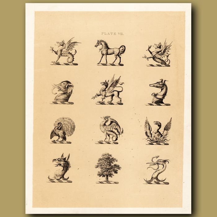 Antique print. Heraldry 7: Elephant, Griffin, Phoenix etc