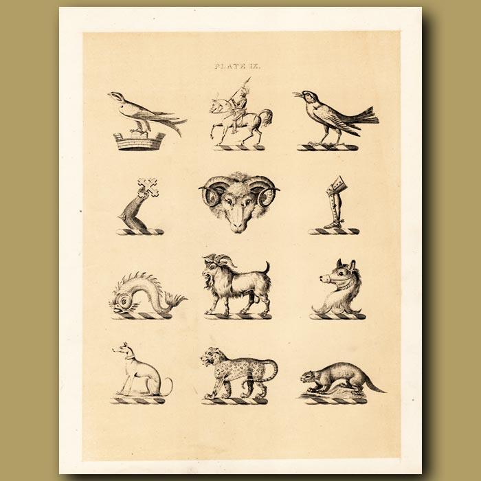 Antique print. Heraldry 9: Knight, Dog, Leopard etc