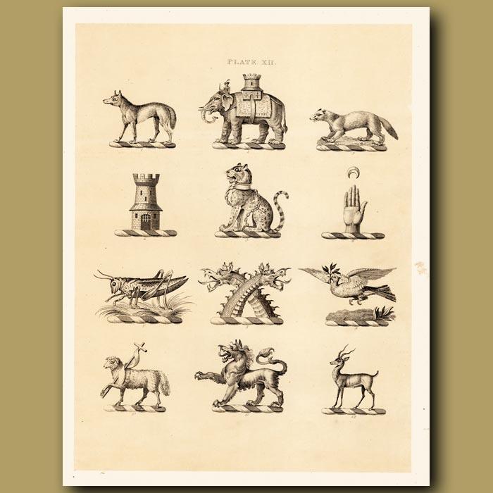 Antique print. Heraldry 12: Wolf, Locust, Elephant etc