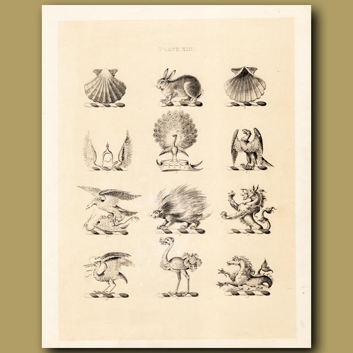 Antique print. Heraldry 13: Peacock, Eagle, Heron etc