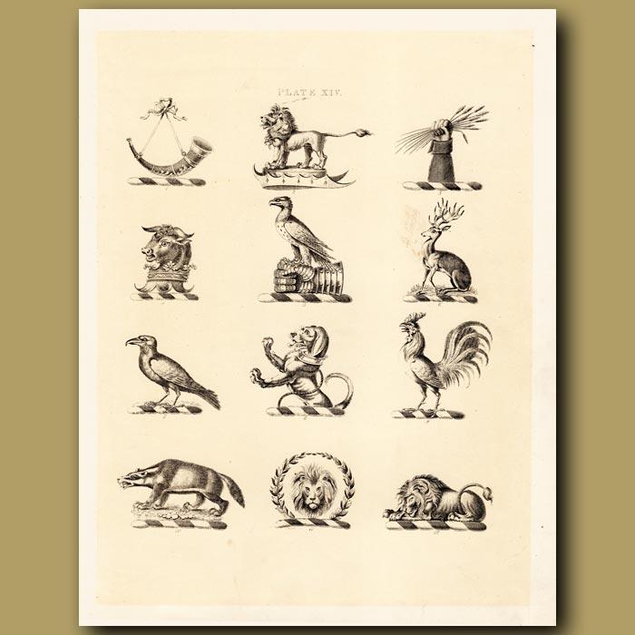 Antique print. Heraldry 14: Deer, Raven, Badger etc