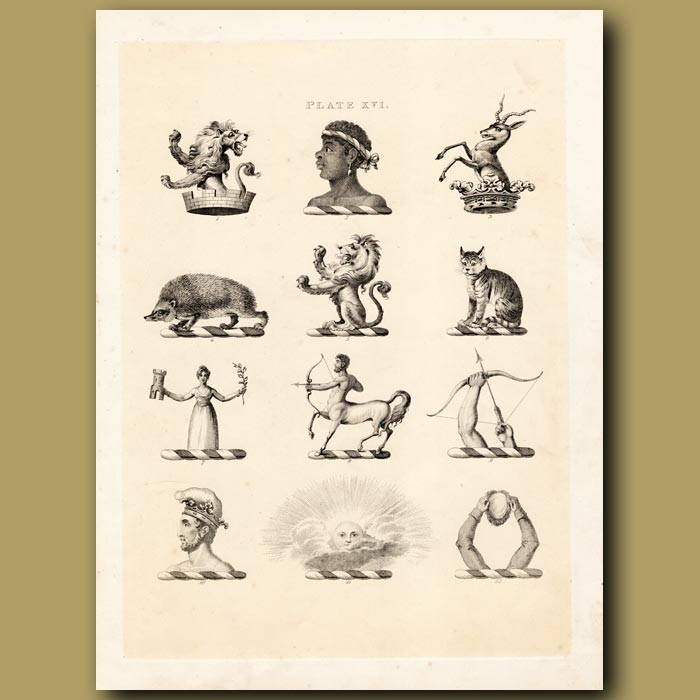 Antique print. Heraldry 16: Centaur, Lion, Hedgehog etc