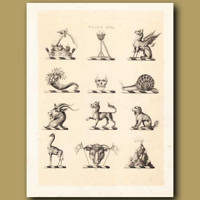 Antique print. Heraldry 17: Griffin, Skull, Snail etc