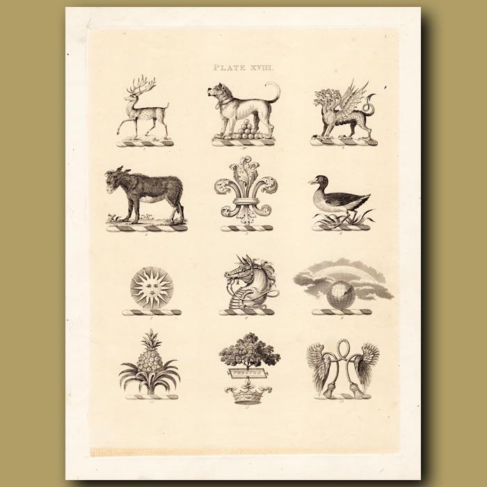 Antique print. Heraldry 18: Mastiff, Donkey, Pineapple etc