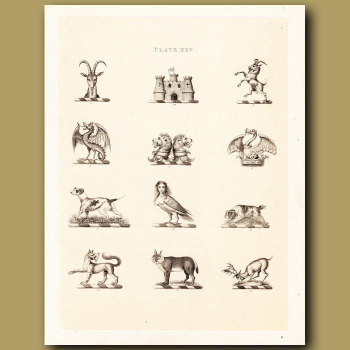 Antique print. Heraldry 25: Basilisk, Lion, Puma etc