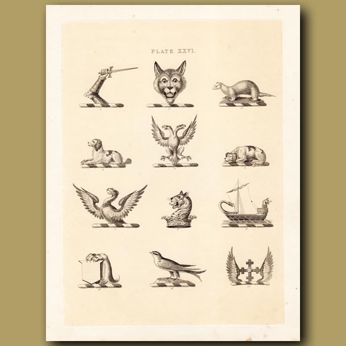 Antique print. Heraldry 26: Cougar, Dog, Tiger etc