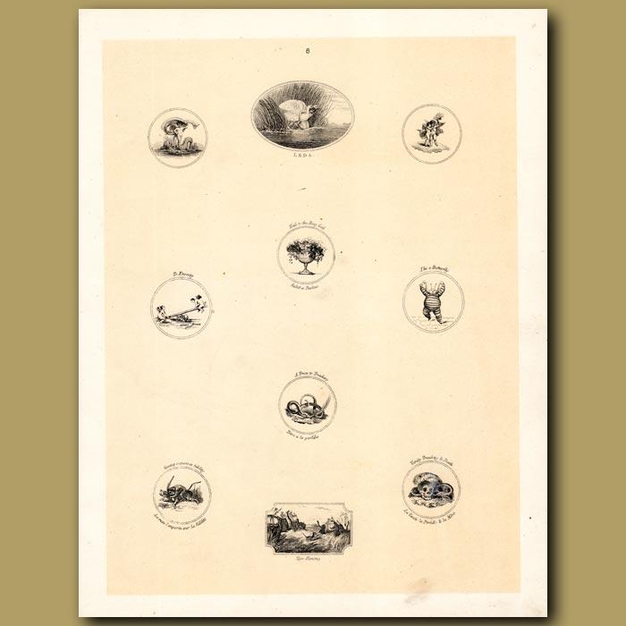 Antique print. Swans, Cupids, Snake, Tiger, Skulls
