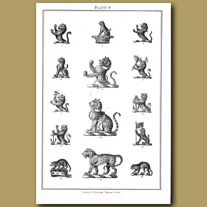 Leopards: Genuine antique print for sale.