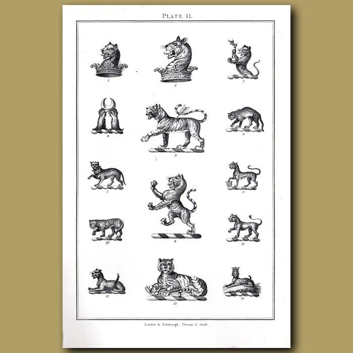 Tigers: Genuine antique print for sale.