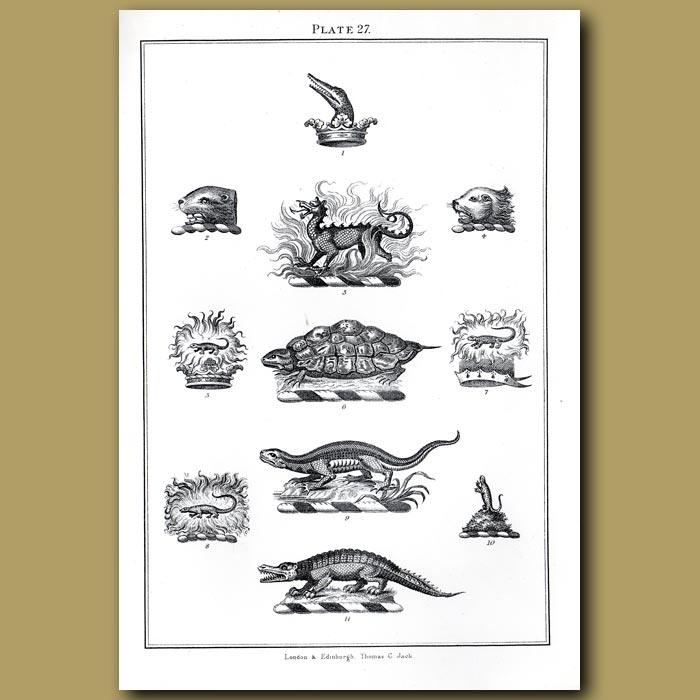 Dragons, Tortoise, Crocodile, Lizard, Crowns: Genuine antique print for sale.